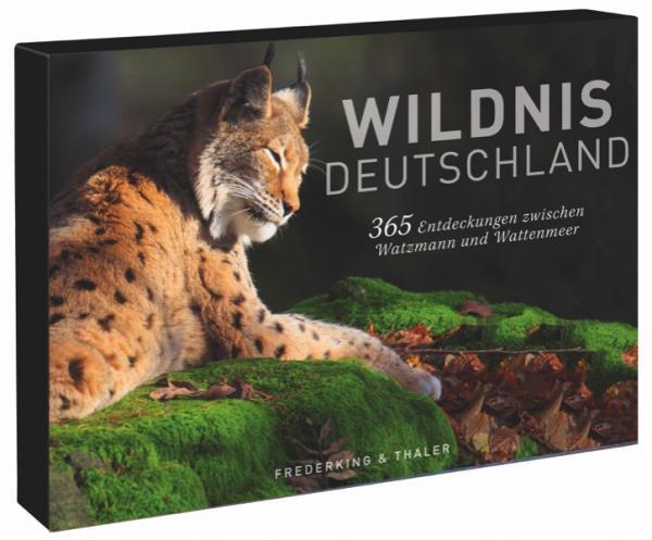 Tischaufsteller – Wildnis Deutschland